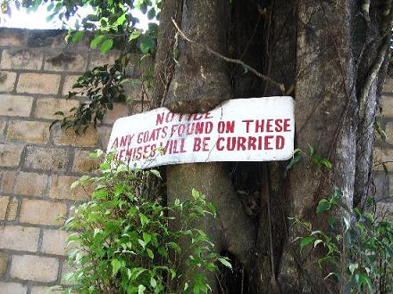 Funny Signs in Jamaica