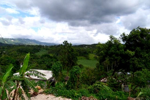 countryside in St Catherine Jamaica